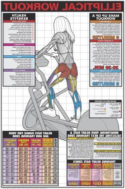 ELLIPTICAL TRAINER Professional Cardio Instructional Fitness