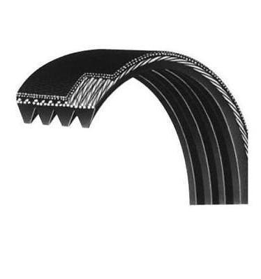 d main drive belt