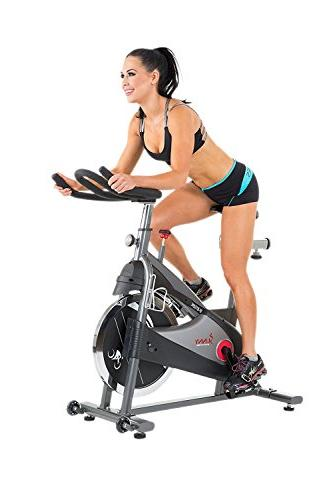 Sunny Health & Fitness SF-B1509C Indoor Cycling Trainer, Gre