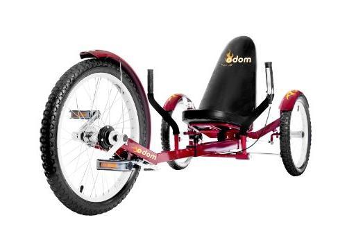 Mobo Recumbent Trike. Adult Tricycle for Men. Petal
